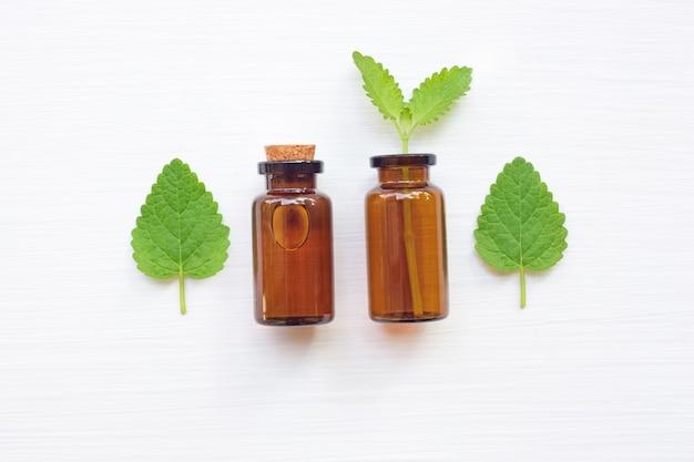 Una bottiglia di melissa melissa olio essenziale con foglie fresche