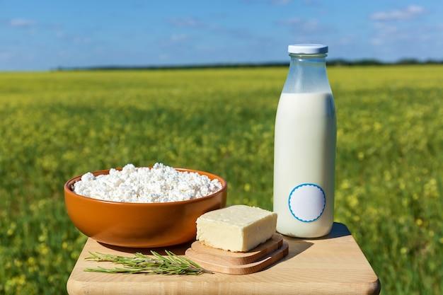 Bottiglia di latte, ricotta e burro su uno sfondo di prato giallo e cielo blu