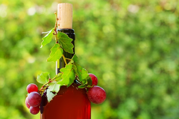 Bottiglia di vino rosso di close-up sul verde pieno di sole