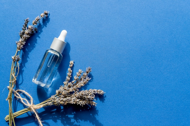 Bottiglia con olio aromatico e fiori di lavanda isolati su sfondo blu. salone spa. fiori di olio di lavanda. design. fcae e cura del corpo.