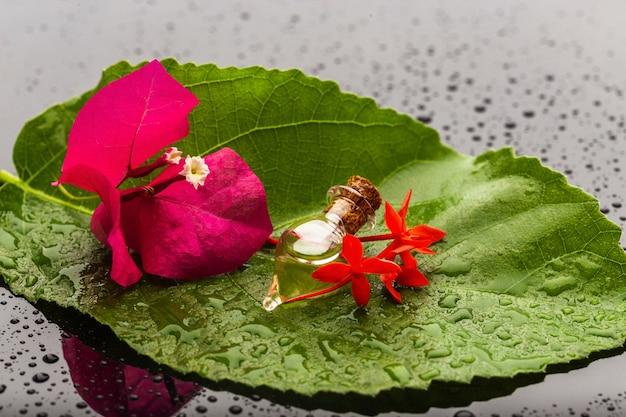 Bottiglia con olio aromatico tra fiori rosa adagiata su una foglia verde. set per spa e massaggi. avvicinamento