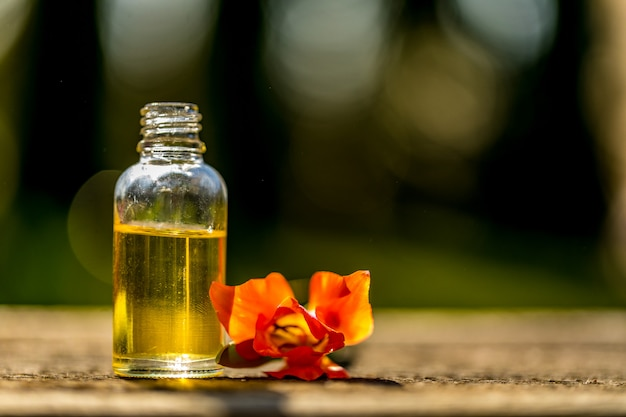 Bottiglie di olio essenziale con erbe secche e fresche e resina di incenso