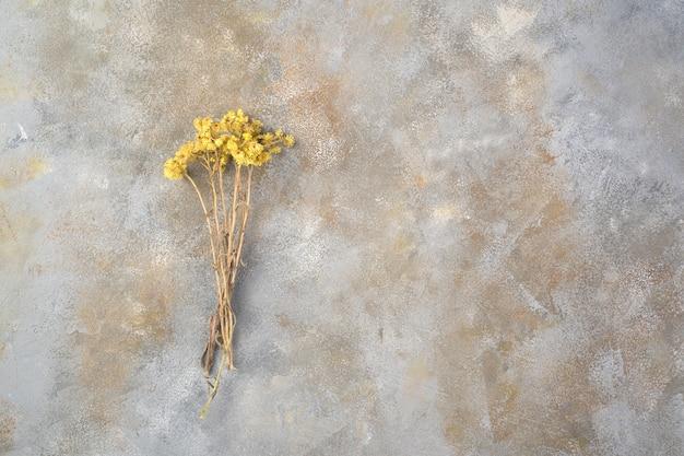 Un bouquet di fiori di campo essiccati autunnali su una superficie di cemento grigio