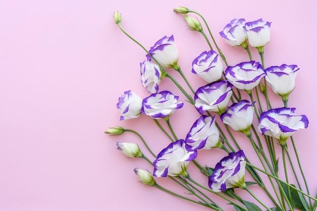 Un bouquet di bellissimi eustoma viola appena tagliati su uno sfondo di una tonnellata. sfondo con bei colori