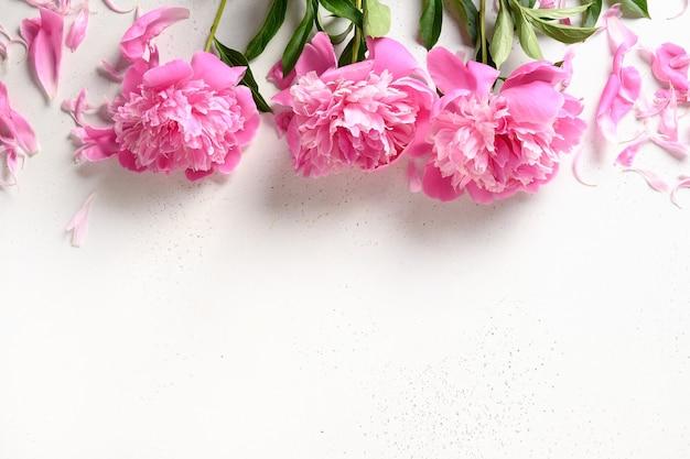 Bouquet di bellissimi fiori di peonia rosa su bianco on