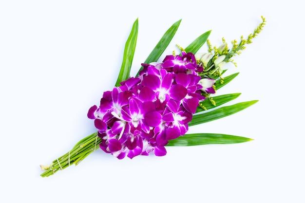 Bouquet di bellissimi fiori di orchidea viola isolati su priorità bassa bianca