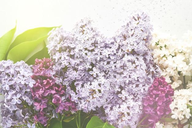 Bouquet di bellissimi lilla bianchi e viola su sfondo bianco. vista dall'alto. biglietto di auguri festivo. sfondo floreale primaverile o estivo. fiori che sbocciano. immagine tonica.