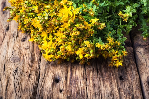 Bouquet di erbe medicinali in fiore