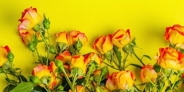 Bouquet di rose arancio brillante su sfondo giallo brillante