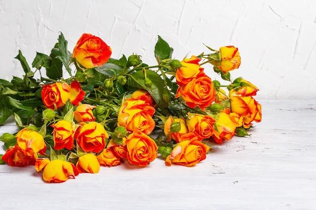 Bouquet di rose arancione brillante su sfondo bianco