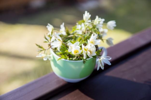 Bouquet, mazzo di fiori primaverili bianchi in vaso. fiore di primavera bianco, bucaneve, anemone, primo piano