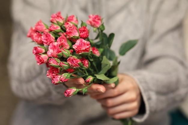Mazzo di cespugli di rose in mani femminili su uno sfondo di maglioni lavorati a maglia