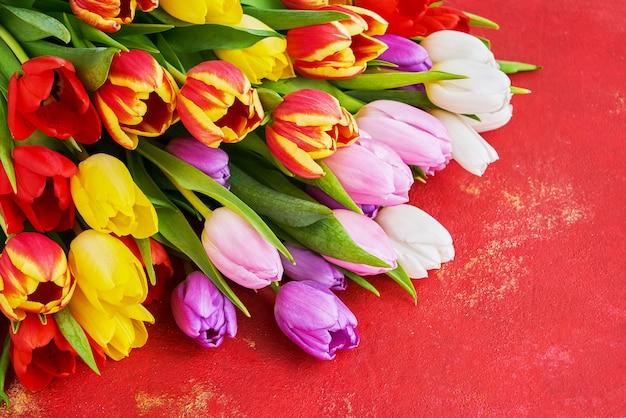 Bouquet di tulipani colorati su uno sfondo rosso brillante.