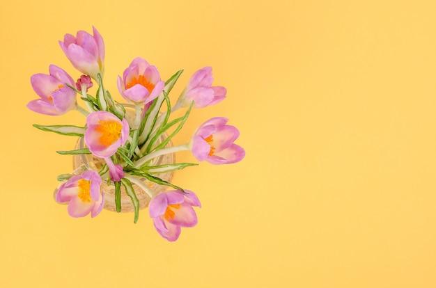 Bouquet di delicate primule lilla su sfondo giallo, con spazio di copia