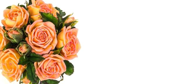 Bouquet di rose delicate su sfondo bianco, con copia spazio
