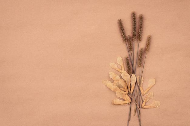 Bouquet di piante da campo secco su sfondo pastello con spazio copia