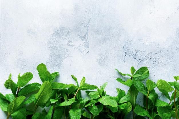 Bouquet di foglie di menta fresca sdraiato sul vecchio cemento grigio.