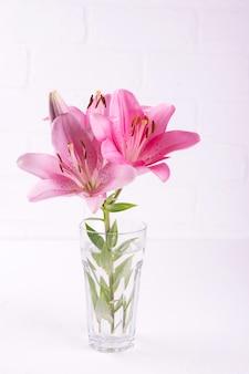 Un mazzo di gigli rosa chiaro su sfondo bianco.