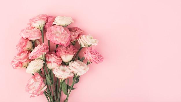 Bouquet di lisianthus rosa su sfondo rosa, vista dall'alto, banner, eustoma