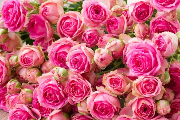 Bouquet di rosa piccole rose fresche vicino sfondo