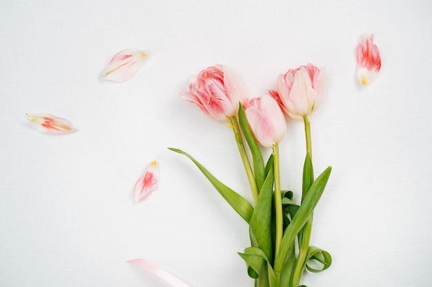 Mazzo di tulipani rosa. vista dall'alto, sfondo bianco, spazio per la copia del testo.