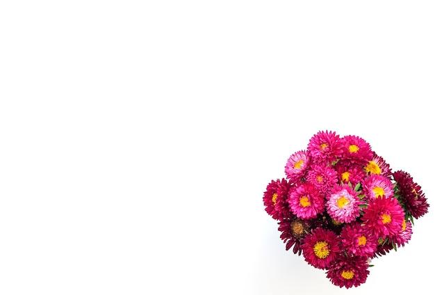 Bouquet di crisantemi rossi su sfondo bianco