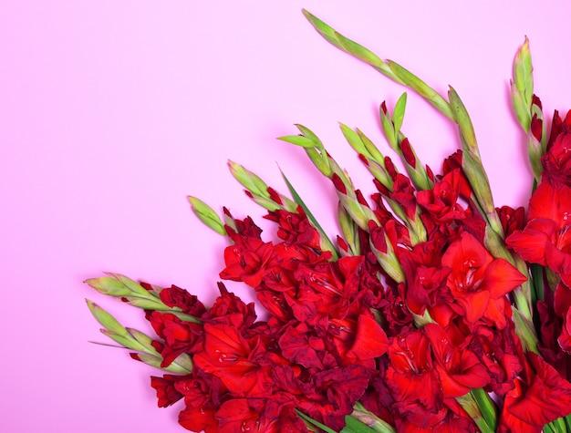 Bouquet di gladioli rossi