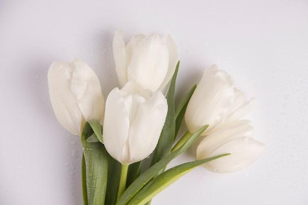 Bouquet di fiori primaverili. vista dall'alto di tulipani bianchi