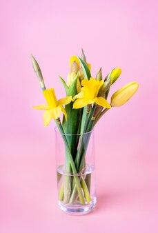 Bouquet di narcisi gialli primaverili su sfondo rosa pastello