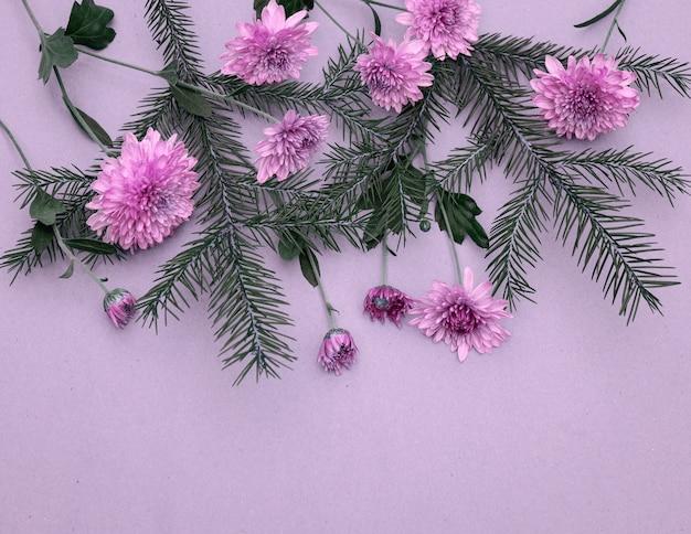 Bouquet di rametti di abete e fiori di crisantemo su sfondo viola con spazio di copia