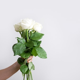 Bouquet di rose bianche fiore in mano femminile