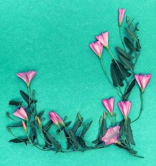 Bouquet di fiori di campo convolvolo su uno sfondo verde con copia spazio per il design.
