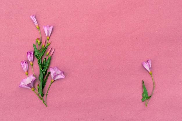 Bouquet di fiori di campo convolvolo su uno sfondo rosa con copia spazio per il design.
