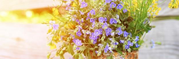 Un bouquet di fiori di campo di margherite blu e fiori gialli in piena fioritura in un barattolo rustico arrugginito