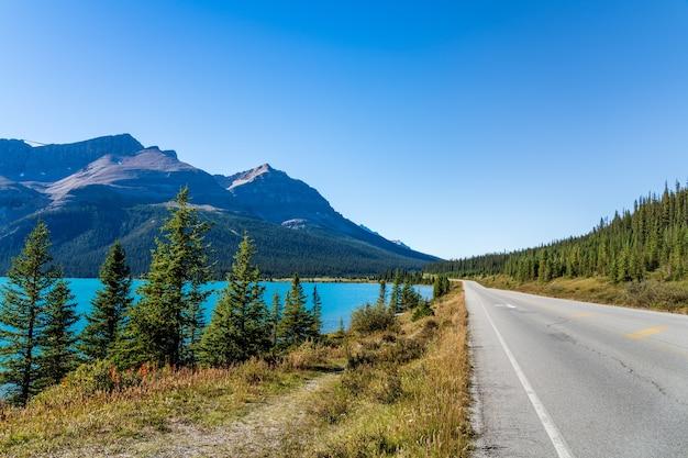 Bow lake al ciglio della strada dell'autostrada 93 dell'alberta. parco nazionale di banff, montagne rocciose canadesi, alberta, canada.