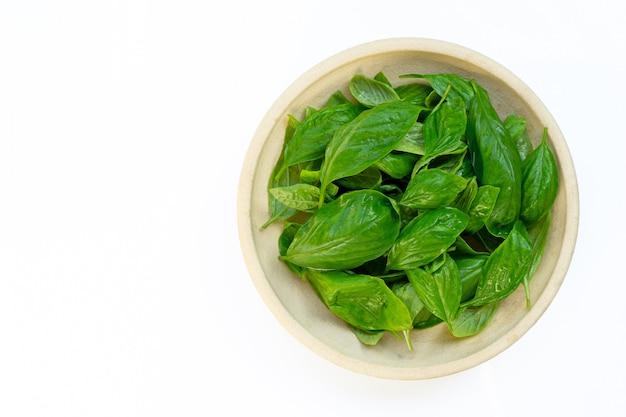 Ciotola di foglie del basilico isolate