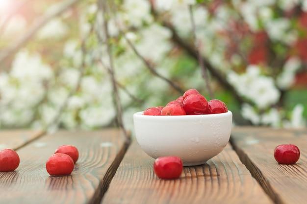 Una ciotola con bacche di ciliegio congelate su un albero in fiore. conservazione degli alimenti mediante congelamento.