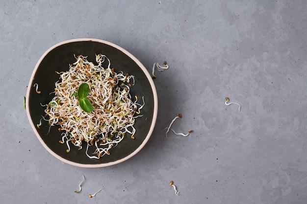 Ciotola con lino germogliato, microgreens su sfondo grigio, superfood sano, copia spazio.