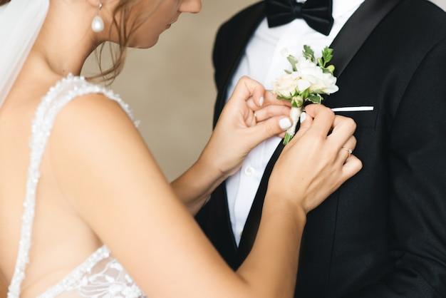 Papillon, toelettatura, preparazione del matrimonio