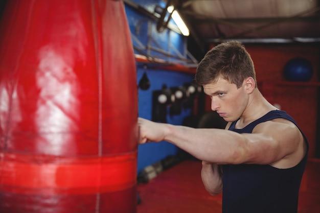 Boxer praticare boxe sul sacco da boxe