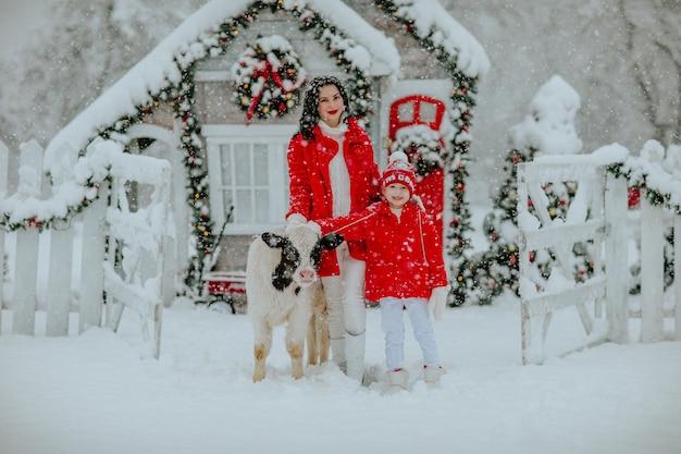 Ragazzo e donna castana in posa con piccolo toro al ranch invernale con decorazioni natalizie. nevicando