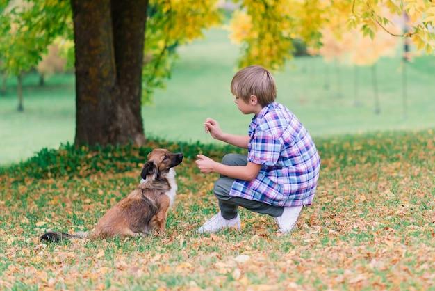 Ragazzo che abbraccia un cane e gioca con in autunno