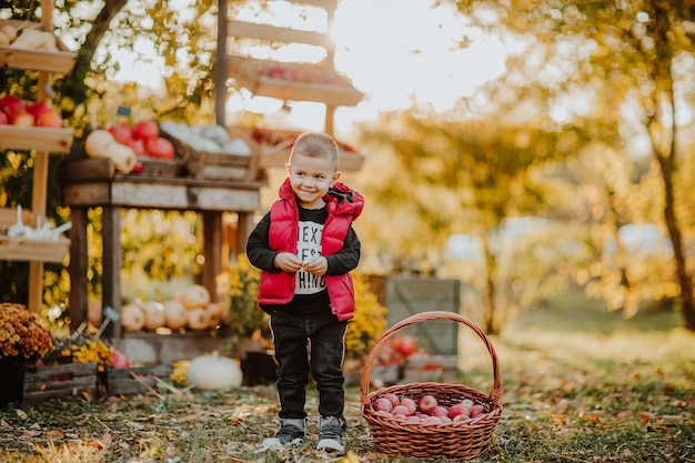 Ragazzo in posa vicino al cesto con le mele al mercato aperto