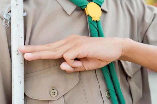 Un boy scout ha presentato rispetto per l'azione