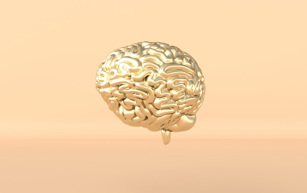 Modello di illustrazione del rendering del cervello