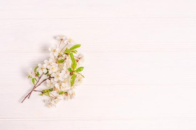 Ramo di fiori di ciliegio su uno sfondo bianco con posto per il testo. lay piatto, vuoto per cartolina, banner, spazio di copia. vista dall'alto