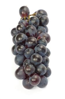Il ramo d'uva con gocce d'acqua