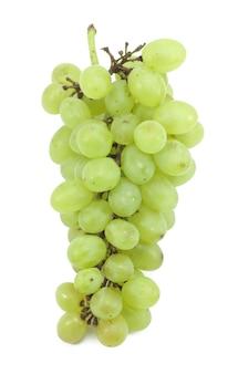 Ramo di uva verde isolato