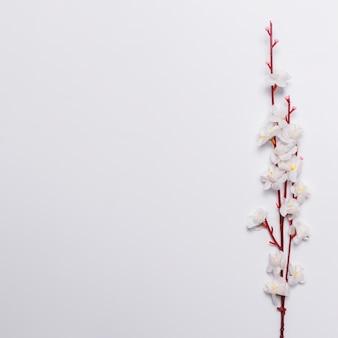 Ramo con fiori bianchi