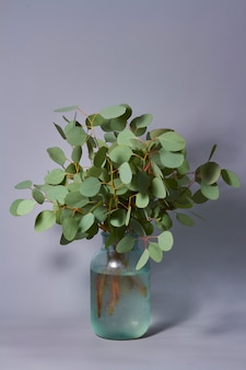 Rami di eucalipto in vaso sul tavolo. home decor. blog, sito web o concetto di social media.